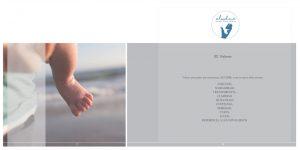 Diseño de Marca -Aludme -Ethereal Design -Trabajos